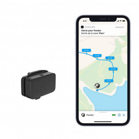 GPS Tracker for animals including subscription - Gps Tracker for animals with 3 years of subscription, autonomy of 3 months, wa