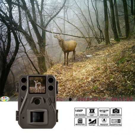 Small animal camera HD 14 million pixels - Trap photo classic and compact, 14 million pixels sensor high definition, 1.44 LCD s