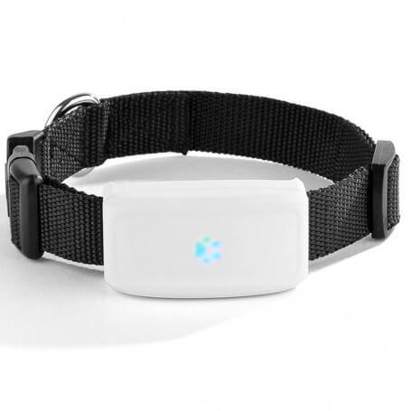 Traceur GPS Animal de compagnie étanche - Traceur GPS pour animaux ultra performant, léger seulement 33 grammes, longue