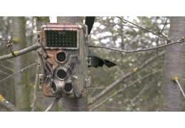Concéntrese en la cámara de caza