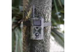 Trail camera, a good idea?